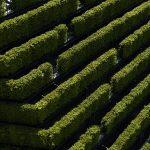 05 Ko Bogen giardino verticale living corriere della sera 994x671
